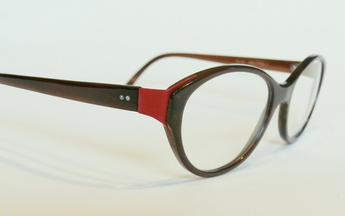 büffelhornbrille-mit-backe-aus-roten-federstahl